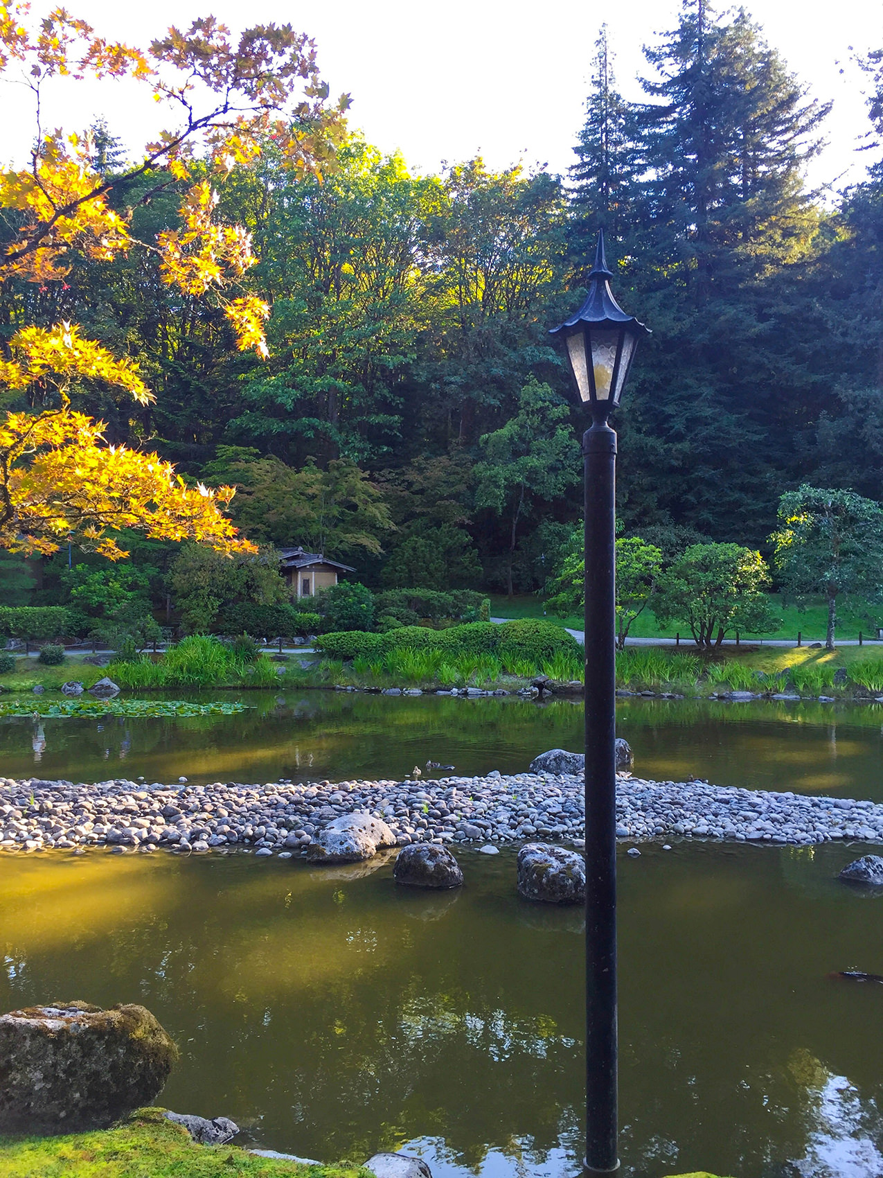 Japanese Garden Soirée A