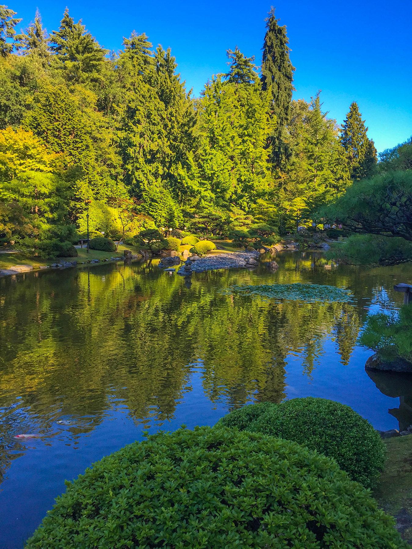 Japanese Garden Soirée B