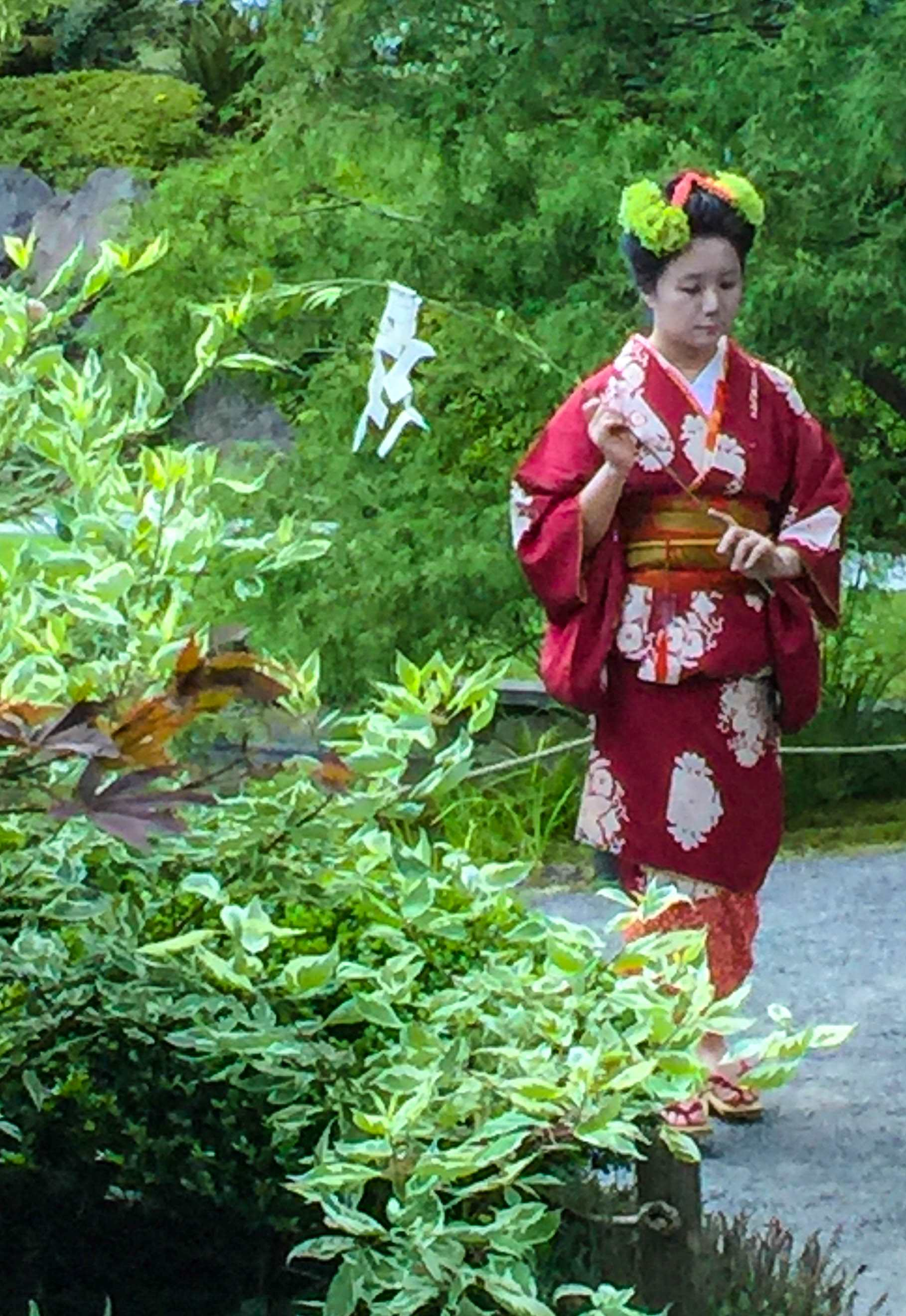 Japanese Garden Soirée J