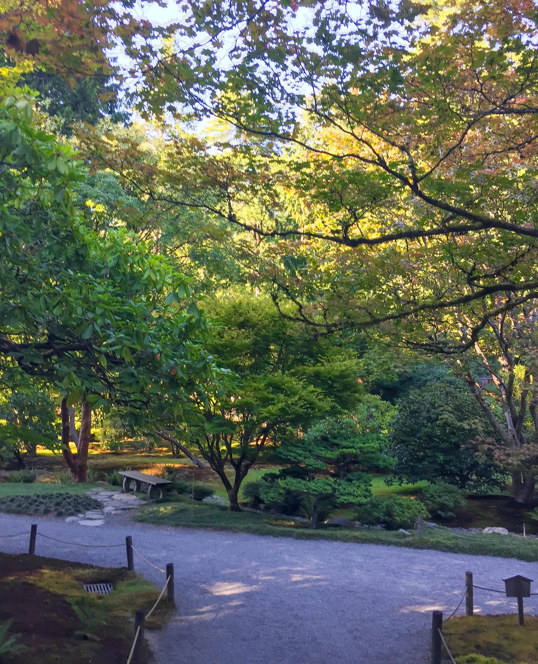 Japanese Garden Soirée P
