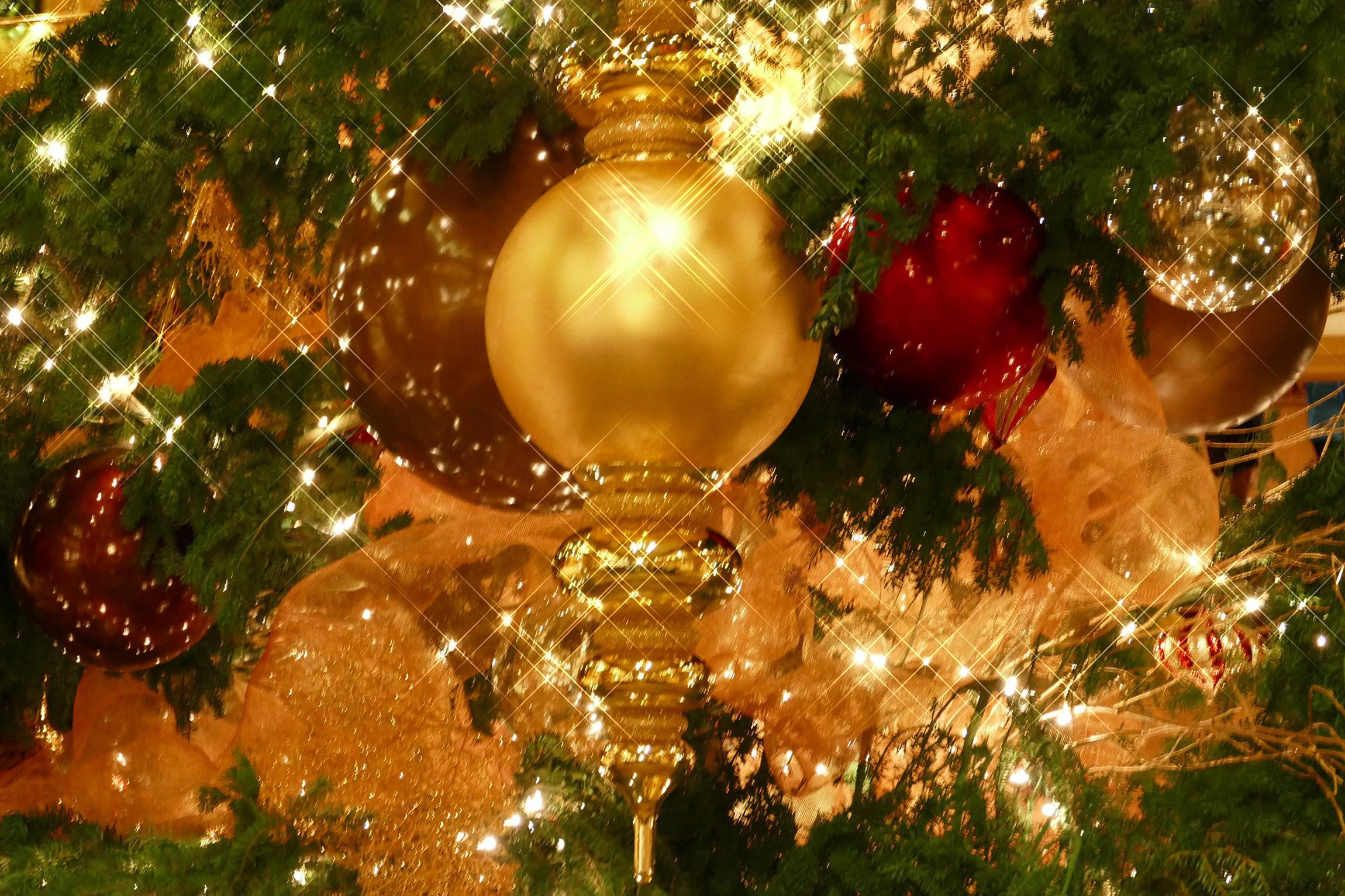 holiday-dress-tip-katherine-chloe-cahoon-b