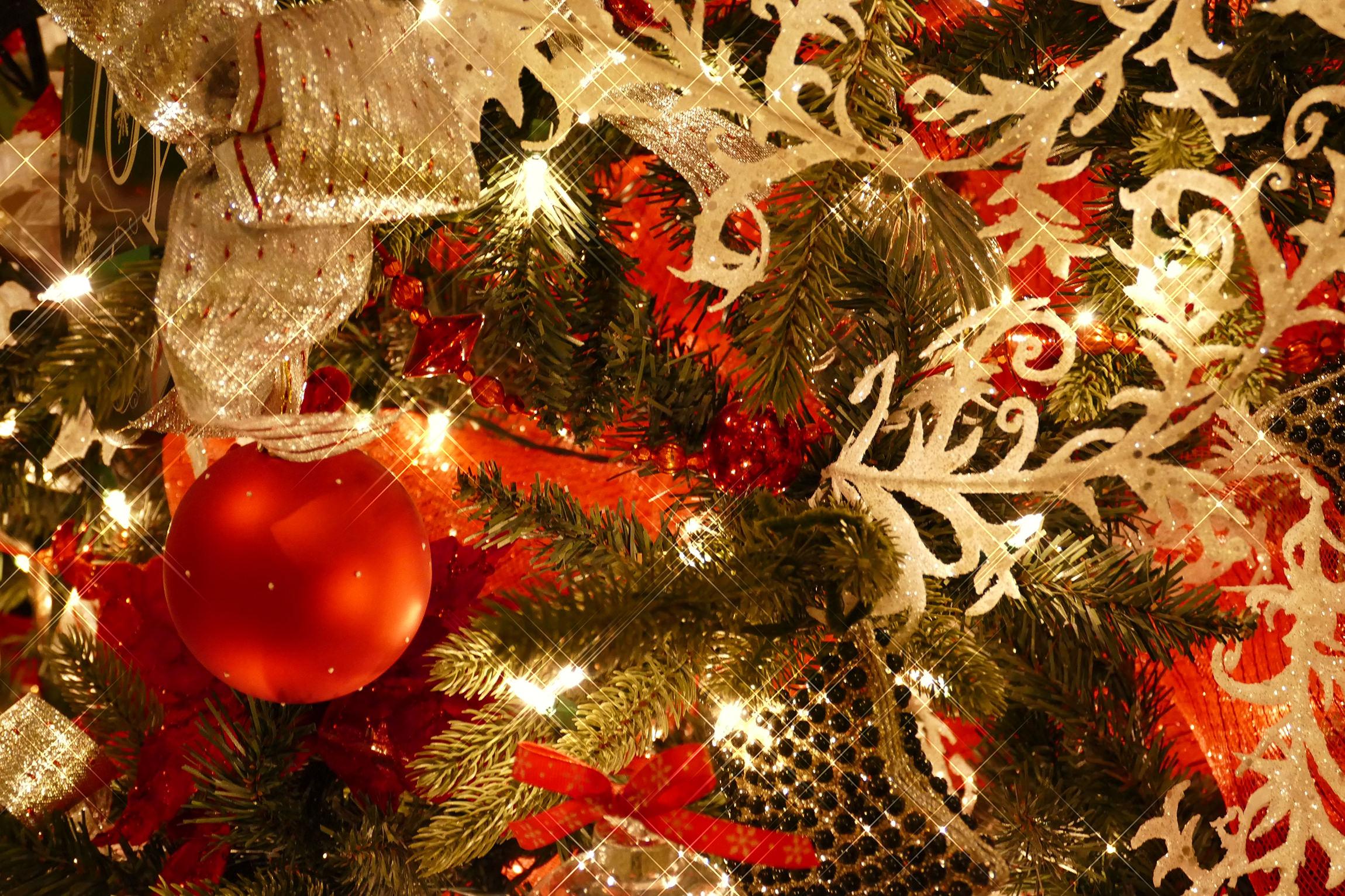 holiday-dress-tip-katherine-chloe-cahoon-d