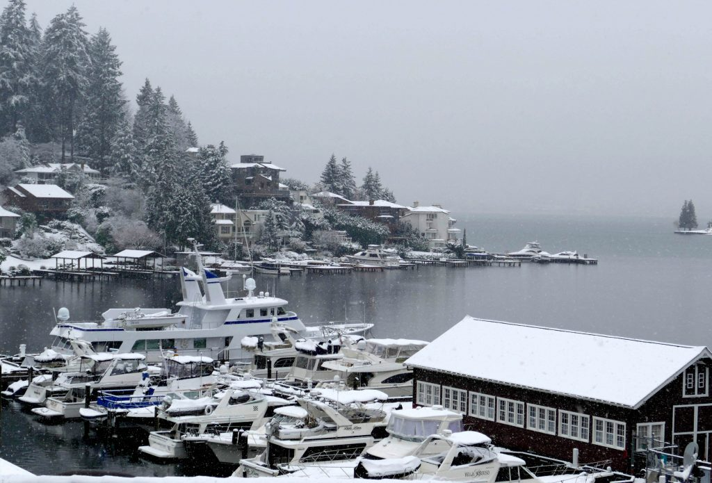 Snowing in Seattle - Katherine Chloe Cahoon D